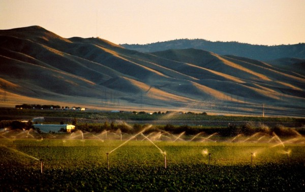 All California's Problems Lead to the San Joaquin Valley