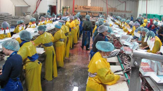 seafood-processing-center