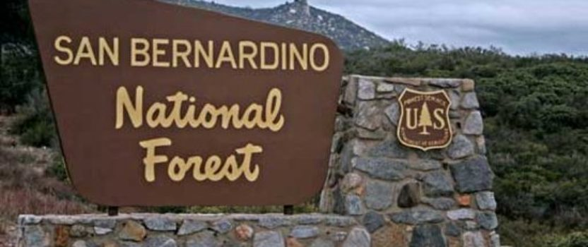 Nestle Allowed to Continue Taking Water from San Bernardino National Forest