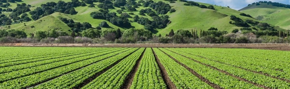 The Complete Story of a Pesticide Free California