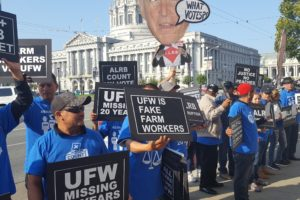 No Verdict yet on United Farm Workers Decertification Vote